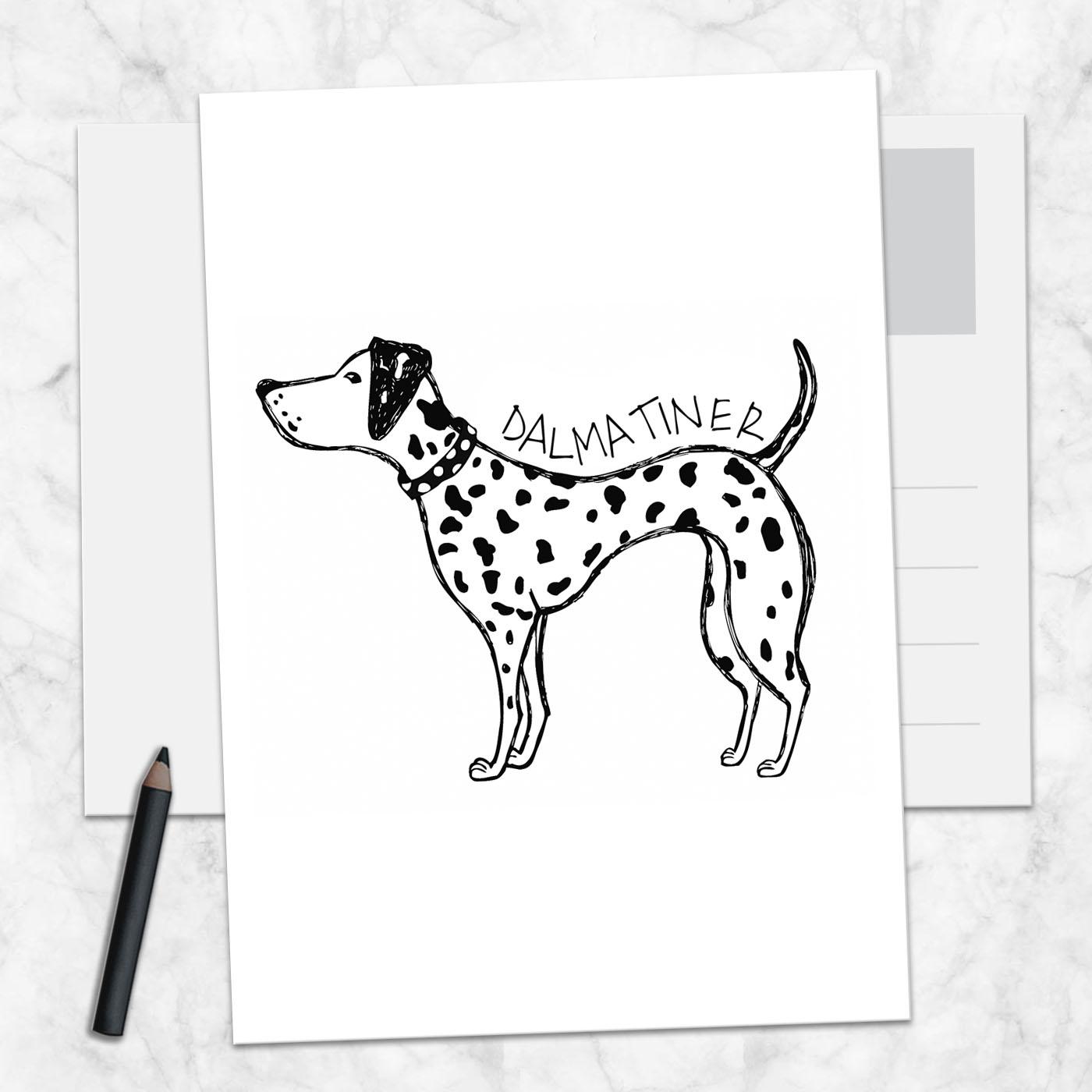 Postkarte Dalmatiner